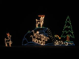 Winter Lights 3