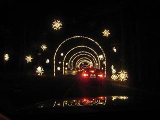 Winter Lights 7