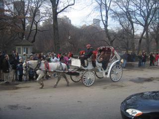 セントラルパークの馬車