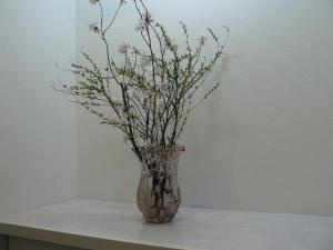 2006041201.jpg
