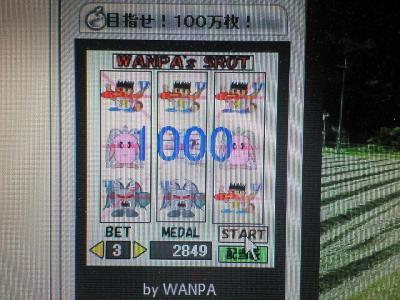 200705250056000.jpg
