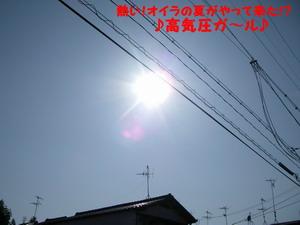 IMGP0205.jpg