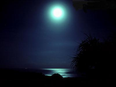 MoonNight1024-1237.jpg