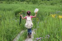 駒止湿原 2011 7 3 05
