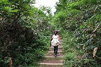 駒止湿原 2011 7 3 03