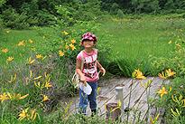 駒止湿原 2011 7 3 07