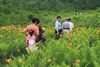 駒止湿原 2011 7 3 08