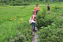 駒止湿原 2011 7 3 10