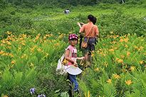 駒止湿原 2011 7 3 09