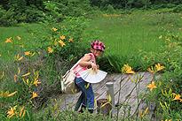 駒止湿原 2011 7 3 06