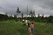 駒止湿原 2011 7 3 15
