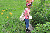 駒止湿原 2011 7 3 11
