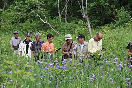 駒止湿原 2011 7 3 003