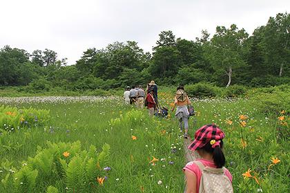 駒止湿原 2011 7 3 008