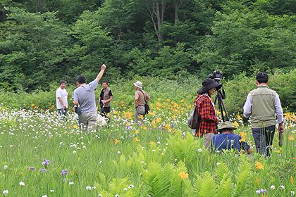駒止湿原 2011 7 3 007