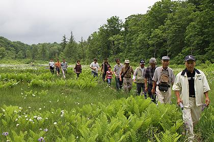 駒止湿原 2011 7 3 018