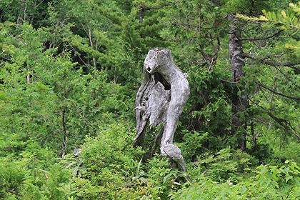 駒止湿原 2011 7 3 100