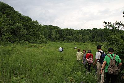 駒止湿原 2011 7 4 004