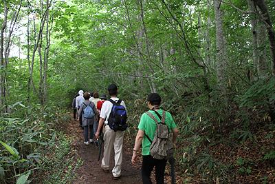 駒止湿原 2011 7 4 003