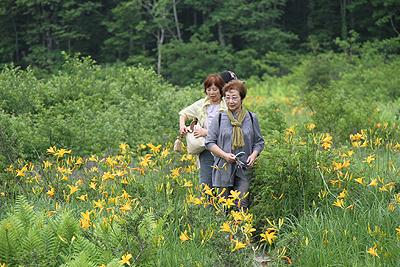駒止湿原 2011 7 4 015
