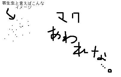 20070830002704.jpg