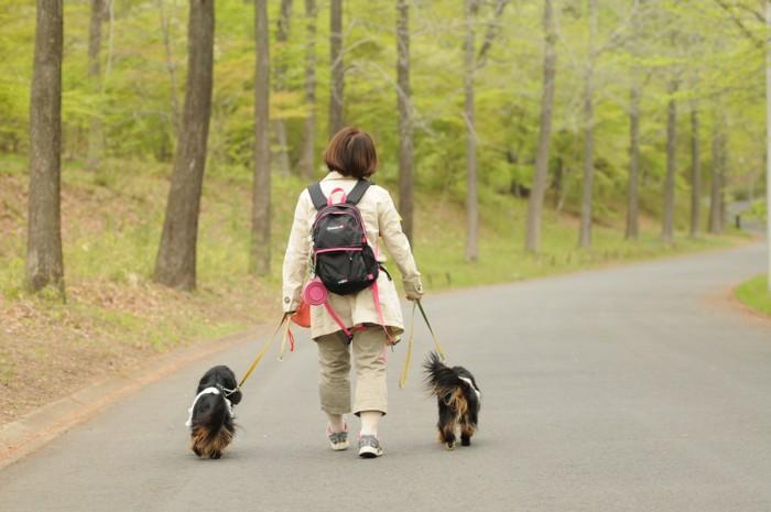 4653奈々・芽衣、歩くの上手だね。