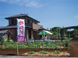 kaijyo_R.jpg