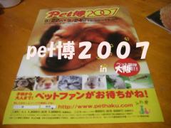ペット博1-0