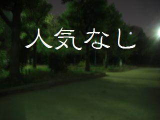 夜のお散歩ー2