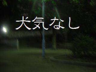 夜のお散歩ー3