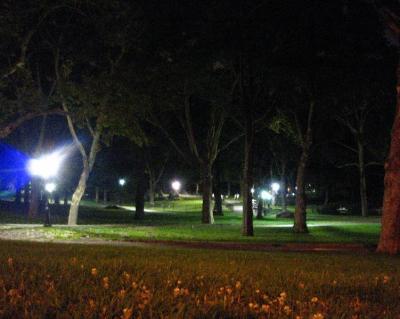 夜のセントラルパーク①
