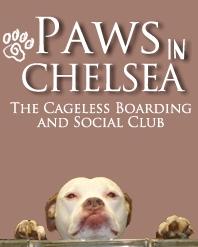 Paws Inn Chelsea①