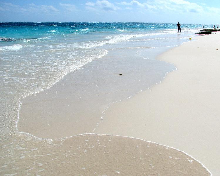 バミューダへの旅④