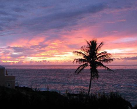 バミューダへの旅31