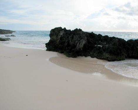 バミューダへの旅28