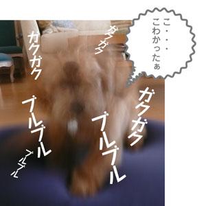 20070712011246.jpg