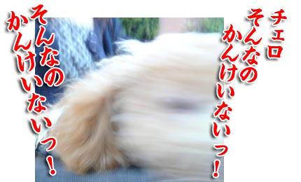 20070915064559.jpg