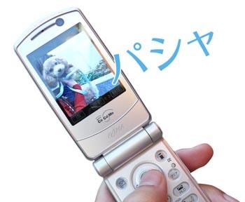 20071021161101.jpg