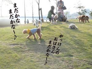 20071026011804.jpg