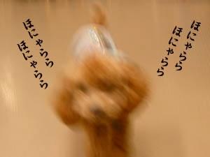20071119154612.jpg
