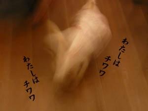 20071119154941.jpg