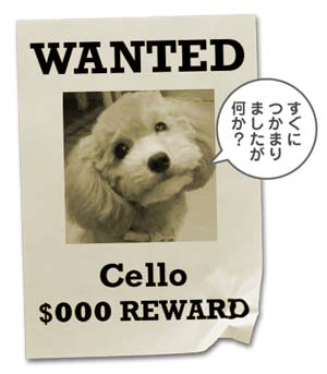WANTED2.jpg
