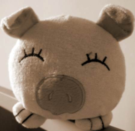 來自菲律賓的會飛的豬
