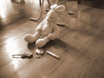 兔子的墮落人生
