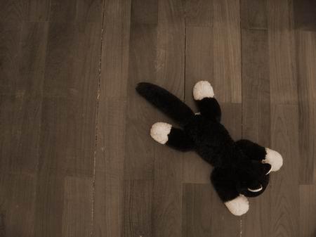 貓迷的地板