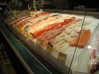 魚コーナー②