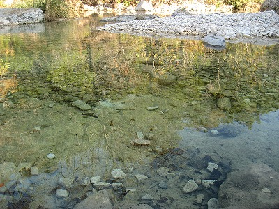 Sabinal River1