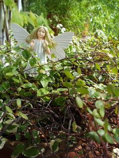ガーデン天使