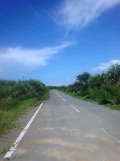最南端への道