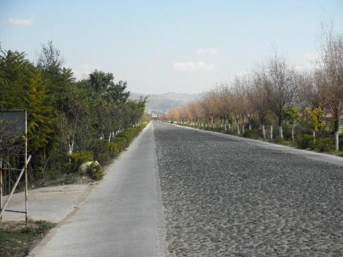 japantripguide (354)